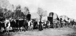 Emigrants on the Oregon Trail