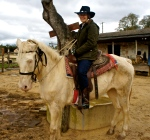 On the Ugliest Horse in the West