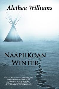 Naapiikoan Winter Cover